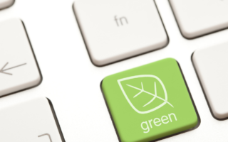 Sustainable Business Ideas: Steps Towards a Greener Future