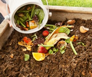Compost as a sustainable business idea