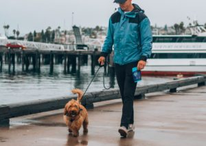 A man in a blue jacket walking his brown dog on a pier